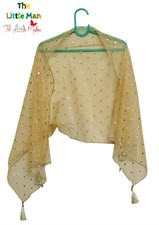 The Gold Dotted Dupatta